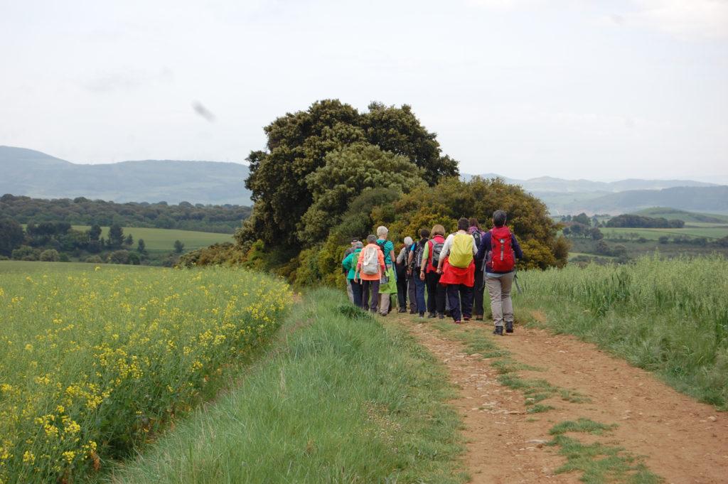 Gruppenreisen auf dem Jakosbweg
